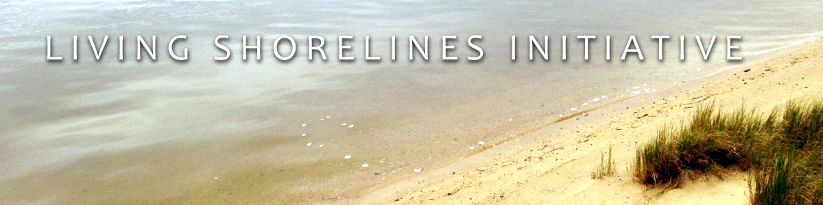 Living Shorelines Initiative